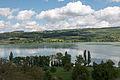 Blick von Beinwil am See auf den Hallwilersee (2).jpg