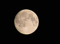 Blue Moon at Hecate Trivia.jpg