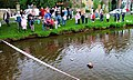 Boat Race, River Leven - geograph.org.uk - 997079.jpg