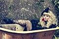 Bonequinha De Luxo (53707116).jpeg