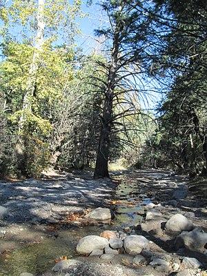 Bonita Canyon - Image: Bonita Creek Faraway Ranch Arizona 2014