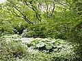 Botanischer Garten Freiburg - DSC06488.jpg