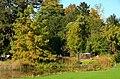 Botanischer Garten der Universität Zürich 2012-10-19 13-49-51.JPG