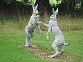 Boxing Hares - geograph.org.uk - 1474037.jpg