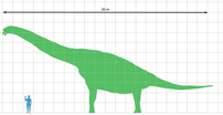Size chart for Brachiosaurus brancai, based on...