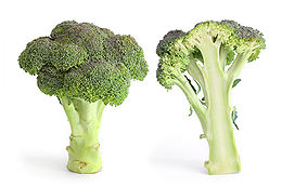 Broccoli and cross section.jpg