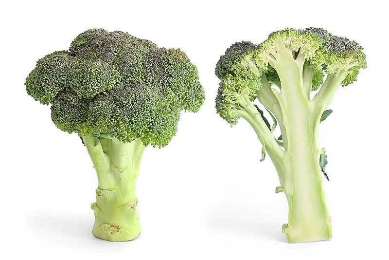 File:Broccoli and cross section.jpg