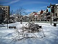 Broken tree limbs - Dupont Circle - Blizzard of 2010.JPG
