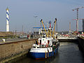 Broodwinner Ship R01.jpg