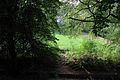 Bryn y Beili, yr Wyddgrug; Bailey Hill, Mold, Sir y Fflint, North Wales 06.jpg