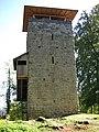 Burgruine Alt-Wülflingen.jpg