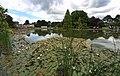 Burnby Hall Gardens lake - geograph.org.uk - 1363985.jpg