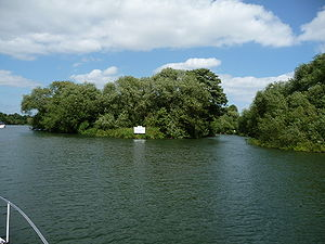 Ait - Bush Ait on the River Thames in Berkshire