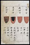 C14 Chinese tongue diagnosis chart Wellcome L0039596.jpg