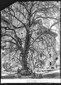 CH-NB - Payerne, Abbatiale, Choeur, vue partielle extérieure - Collection Max van Berchem - EAD-7430.tif
