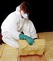 CSIRO ScienceImage 2175 Installing Insulation Batts.jpg