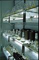 CSIRO ScienceImage 7855 Cultureroom.jpg