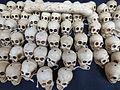 Calaveras de día de muertos en Aguascalientes 2015 1.JPG