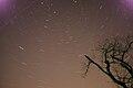 Caledon starry night (5911788345).jpg