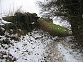 Calleva - ruined wall - geograph.org.uk - 1340685.jpg