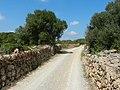 Cami de Biniatap - panoramio.jpg