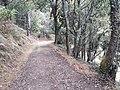 Camino Primitivo, Ferroy, Pola de Allande 01.jpg