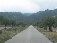 Camino de Olivar Centenario ecológico hacia la Sierra de Salinas, Yecla (Murcia).JPG