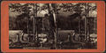 Camp life at Lake George, from Robert N. Dennis collection of stereoscopic views.png