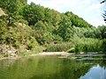 Capătul lacului Cozia - panoramio.jpg