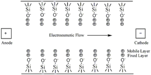 Capillary electrophoresis - Figure 4: Depiction of the interior of a fused-silica gel capillary in the presence of a buffer solution.