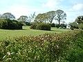 Caravan Site, Monckton Wyld - geograph.org.uk - 171893.jpg