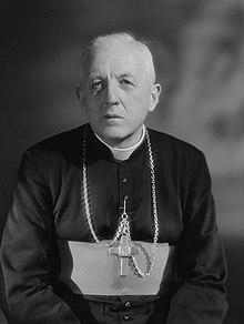 Cardinal François Marty.jpg