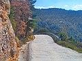 Carretera d'Espunyola a Capolat - panoramio.jpg