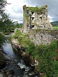 Carriganass Castle - geograph.org.uk - 498627.jpg