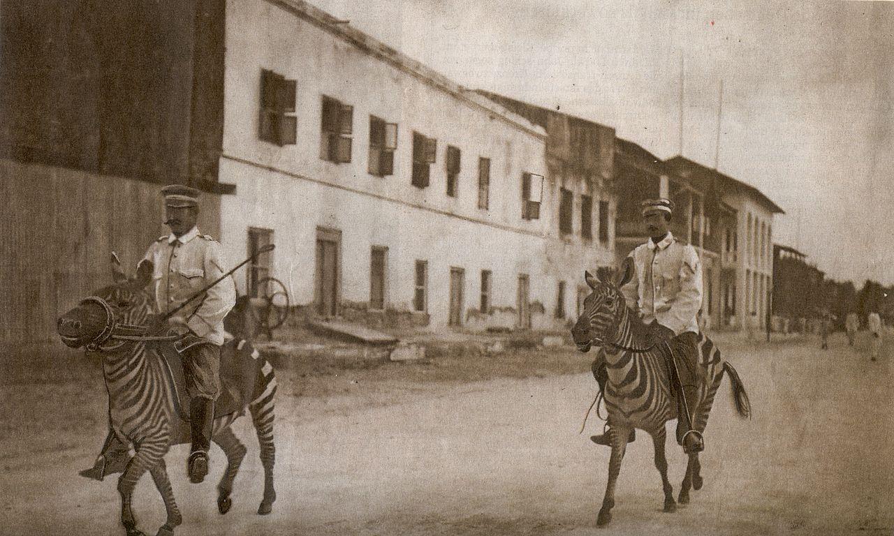 Two Imperial German Colonial Cavalrymen ride Zebras in German East Africa, 1911 –