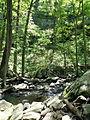 Cedar Falls Trail, Petit Jean State Park 009.jpg