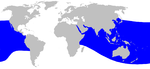 Ginkgo-toothed beaked whale range