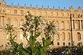 Château de Versailles au coucher du soleil en 2013 02.jpg
