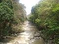 Chamang Fall - panoramio (2).jpg