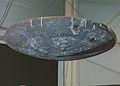 Charred Avcoat heat shield.jpg