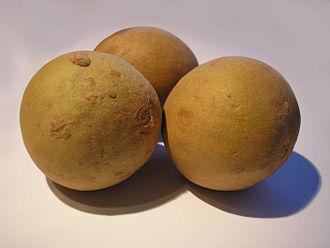 Manilkara zapota - Fruit