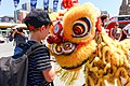 Chinese Lunar New Year 2014, Melbourne AU (12251013526).jpg
