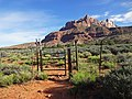 Chinle Trail - Zion National Park (Utah, USA).jpg