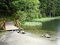 Chodník okolo Vrbického plesa - panoramio.jpg