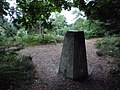 Christchurch, Blackwater trig point from in the trees - geograph.org.uk - 1424416.jpg