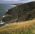 Clifftops north of Beeny - geograph.org.uk - 1002527.jpg