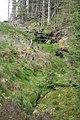 Clinty Sike - geograph.org.uk - 453406.jpg