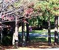 Cobb County, GA, USA - panoramio - Idawriter (33).jpg