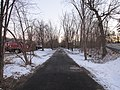 Cochituate Rail Trail, Saxonville MA.jpg