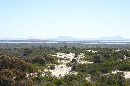 Coffin Bay National Park coastal heath.jpg